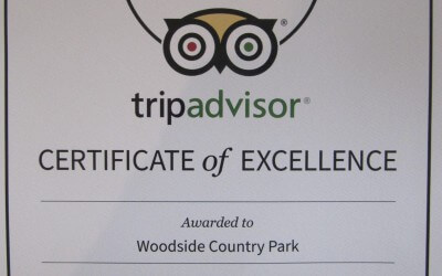 Certificate of Excellence for Woodside!