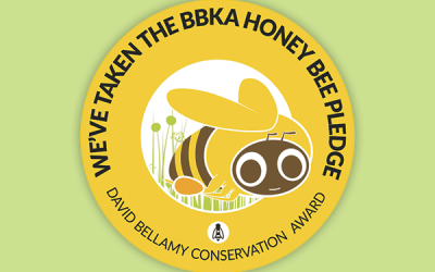 Woodside all signed up to the honey bee pledge!