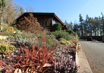 plants-reception