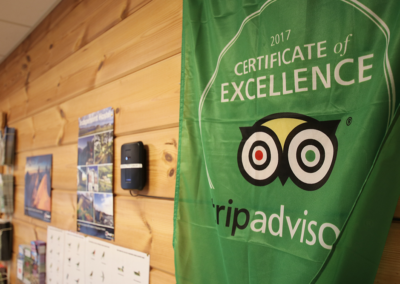 tripadvisor-flag